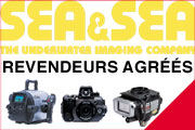 S.A.V. PHOTO ET VIDEO